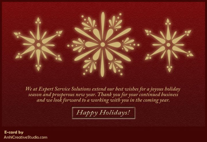 Expert Service Solutions – 2010